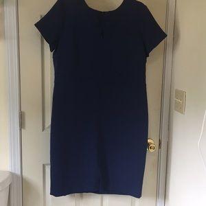 Ann Taylor Dress - Petite